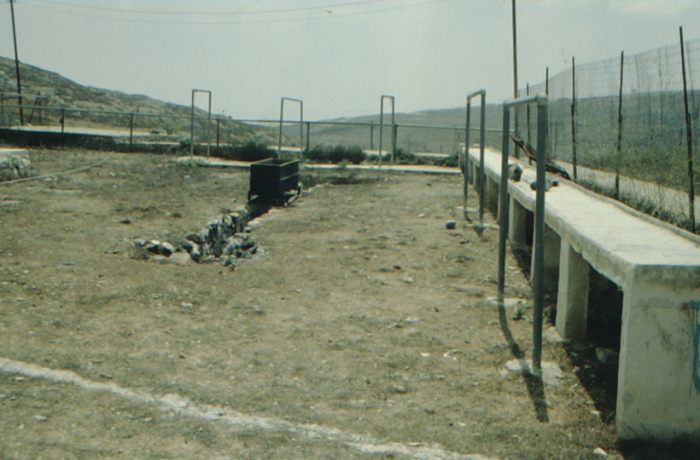 Garizim, moderner Opferplatz