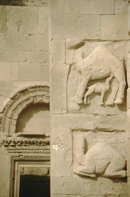 Hatra, Kamelplastik