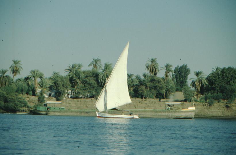 Luxor, Feluke