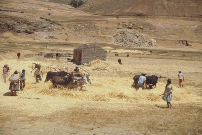 Bahnfahrt zum Titicaca-See, Peru